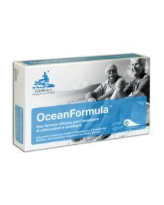 OceanFormula